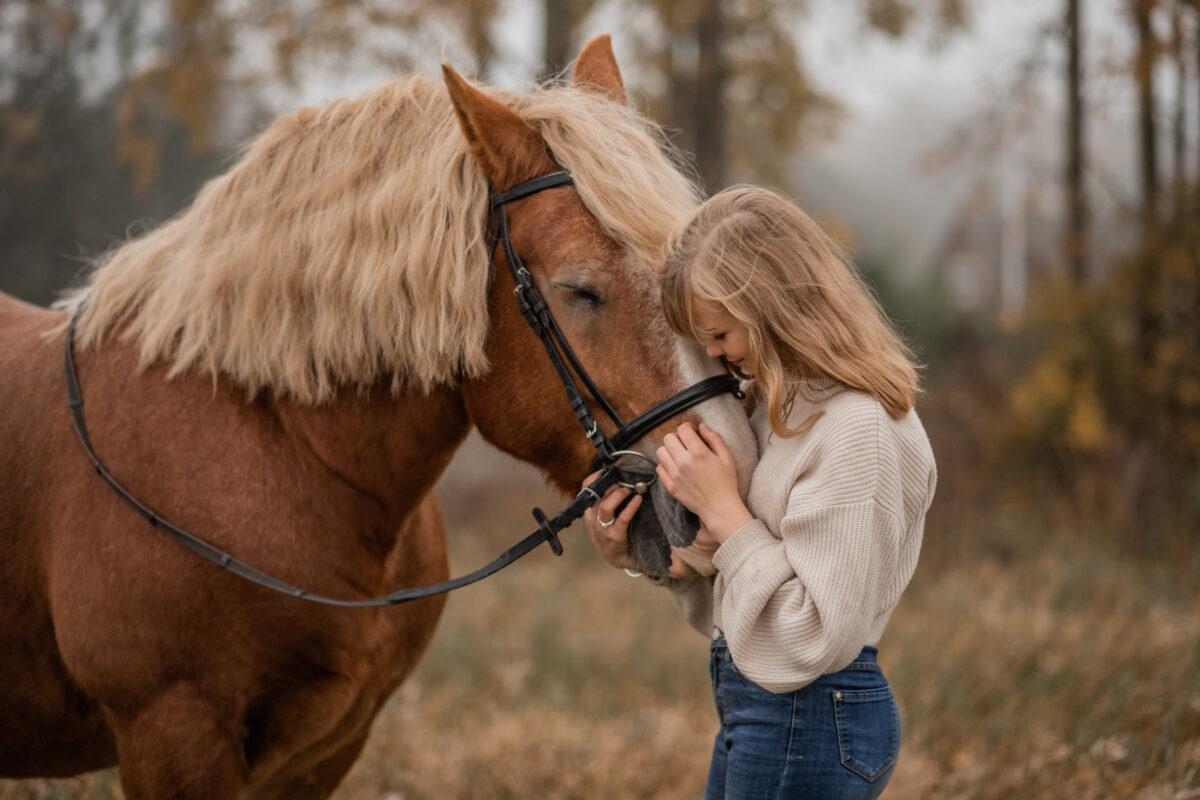 Hobusega uduses sügises
